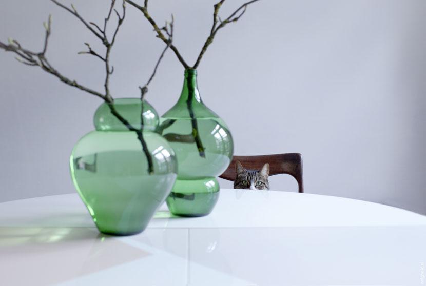 020314-magnolia-8